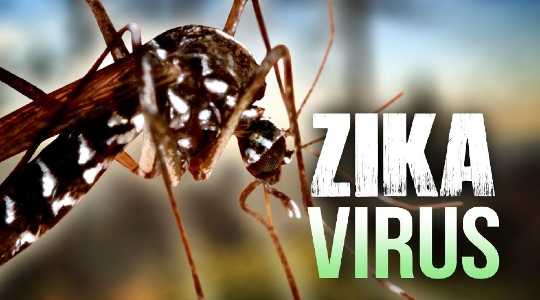 Zika's Overlooked Lessons in Liberty